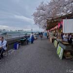 Sumidagawa et parc Sumida à Tokyo  (16)