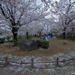 Sumidagawa et parc Sumida à Tokyo  (24)