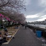 Sumidagawa et parc Sumida à Tokyo  (5)