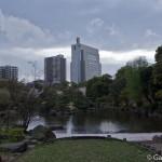Sumidagawa et parc Sumida à Tokyo  (6)