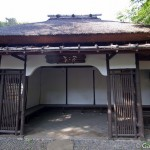 Zoo Ueno panda (13)