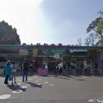 Zoo Ueno panda (7)