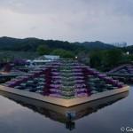 ashikaga flower park tochigi (28)