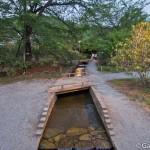 ashikaga flower park tochigi (34)