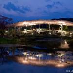 ashikaga flower park tochigi (37)