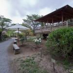 ashikaga flower park tochigi (8)