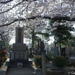 cimetière de Yanaka à Tokyo (10)