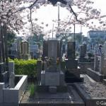 cimetière de Yanaka à Tokyo (3)