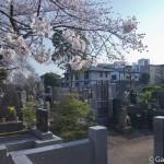 cimetière de Yanaka à Tokyo (8)