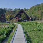 Shirakawago Japon (6)