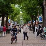 vélo au Japon (9)