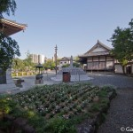 Nishiarai Daishi soji-ji temple Tokyo (28)