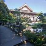 Nishiarai Daishi soji-ji temple Tokyo (5)