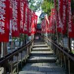 Nishiarai Daishi soji-ji temple Tokyo (6)