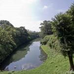 Chateau Himeji (5)