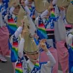 Tokushima Awa Odori (15)