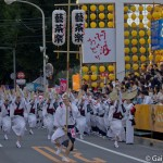 Tokushima Awa Odori (6)