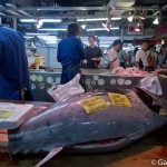 Adachi Shijyo marché aux poissons Tokyo (8)
