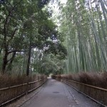 Bambouseraie d'Arashiyama Kyoto (16)