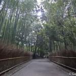 Bambouseraie d'Arashiyama Kyoto (2)