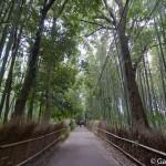 Bambouseraie d'Arashiyama Kyoto (7)