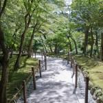 Ginkaku-ji Kyoto (13)