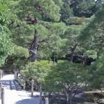 Ginkaku-ji Kyoto (5)
