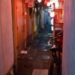 Pontocho Kyoto (15)