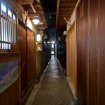 Pontocho Kyoto (5)