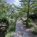Tetsugaku No Michi - Chemin de la philosophie - Kyoto (15)