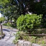 Tetsugaku No Michi - Chemin de la philosophie - Kyoto (18)