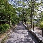 Tetsugaku No Michi - Chemin de la philosophie - Kyoto (4)