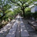 Tetsugaku No Michi - Chemin de la philosophie - Kyoto (7)