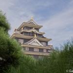 château d'Okayama (13)