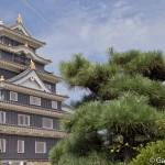château d'Okayama (8)