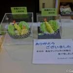 faux plats en plastique Shokuhin Sanpuru Gujo Hachiman (20)
