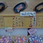 faux plats en plastique Shokuhin Sanpuru Gujo Hachiman (8)
