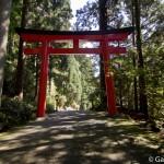 sanctuaire Hakone Jinja (10)