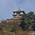 château de Maruoka (6)