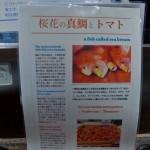 Ouak Ramen Halal Shinjuku Tokyo  (5)