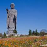 Ushiku Daibutsu le plus grand bouddha du monde (7)