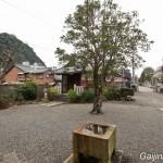 shoho-ji grand bouddha de gifu (3)
