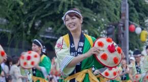 Tohoku 365, six voyages d'un million de Yens à gagner dans le Nord du Japon
