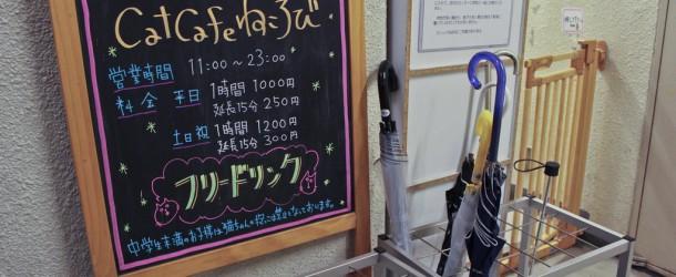 Café à chats : Nekorobi Cat Cafe Ikebukuro