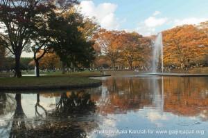 Yoyogi park in Tokyo japan, Yoyogi Park à Tokyo japaon