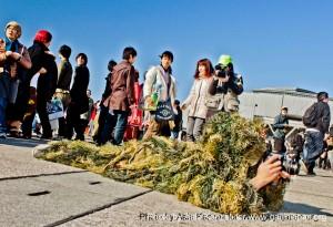 comiket 81, tokyo big sight, photograph, photographe