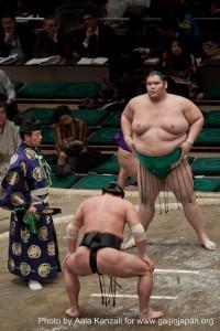 sumo tournament - ryogoku - tokyo - japan - referee & sumo, arbitre