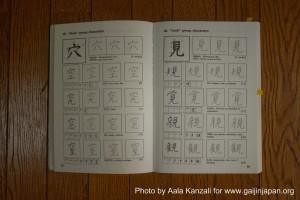 easy kanji, Fujihiko Kaneda, japanese kanji, kanji japonais