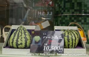 square watermelon, pastèque carrée, heart watermelon, pyramid watermelon, pastèque en coeur, pastèque en pyramide