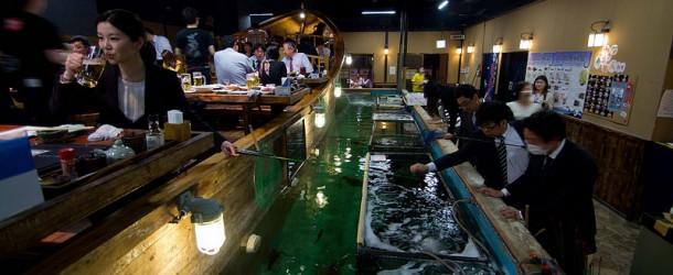 Zauo – Shinjuku : et si on pêchait dans un Izakaya ?